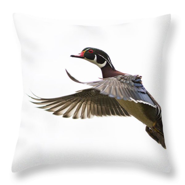 Wood duck Throw Pillow by Mircea Costina Photography