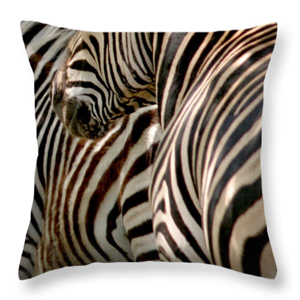 Zebra Stripes Throw Pillow by Joseph G Holland