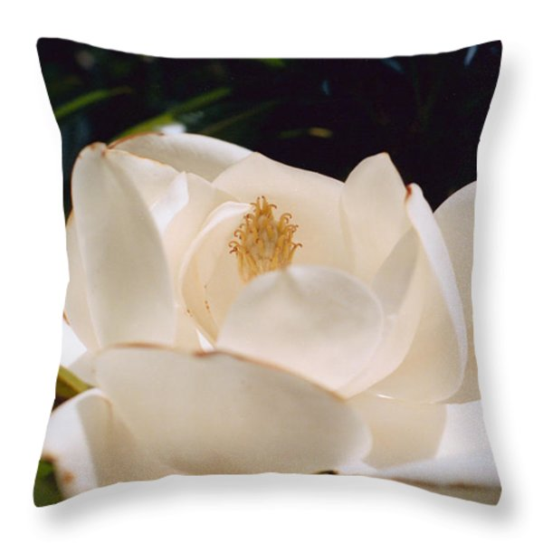 Untitled Throw Pillow by Marcio Faustino