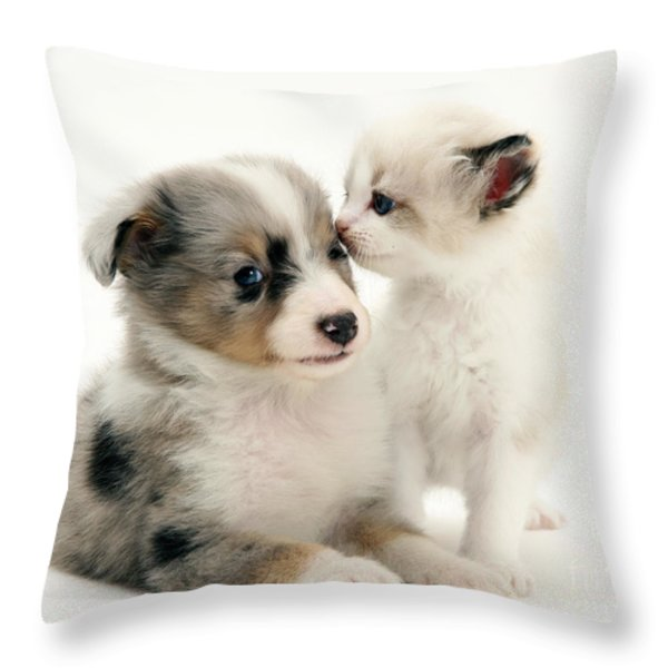 Kitten And Puppy Throw Pillow by Jane Burton