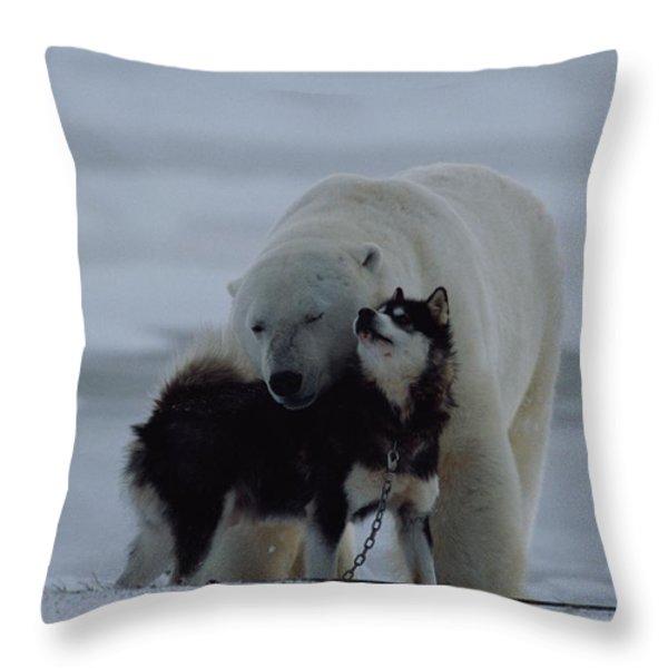 A Polar Bear Ursus Maritimus Throw Pillow by Norbert Rosing