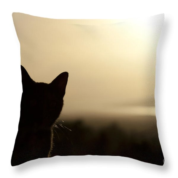 A Pure Soul Throw Pillow by Sharon Mau