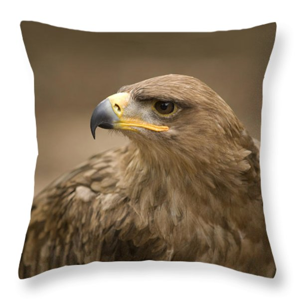 A Tawny Eagle At A Wild Bird Sanctuary Throw Pillow by Joel Sartore