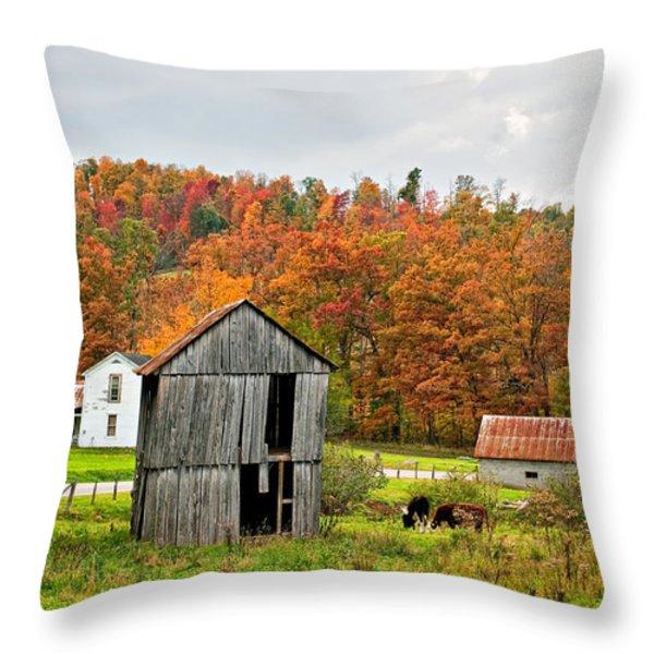 Autumn Farm Throw Pillow by Steve Harrington