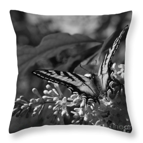 Expectation of the Dawn Throw Pillow by Sharon Mau