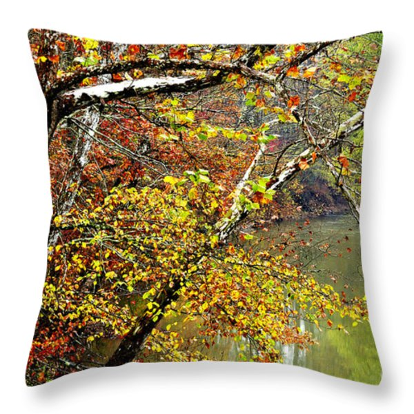 Fall Along West Fork River Throw Pillow by Thomas R Fletcher
