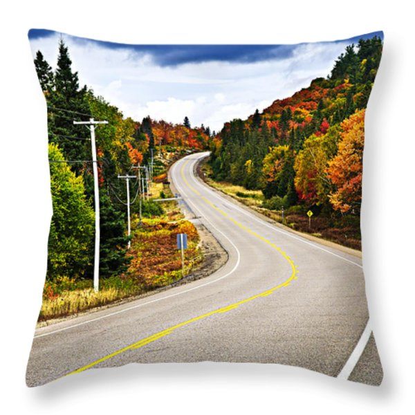 Fall highway Throw Pillow by Elena Elisseeva