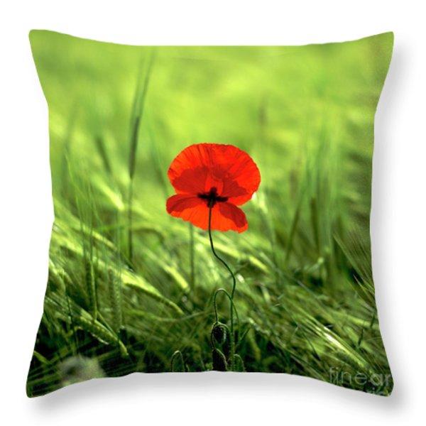 Field Of Wheat With A Solitary Poppy. Throw Pillow by Bernard Jaubert