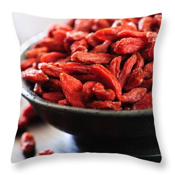 Goji berries Throw Pillow by Elena Elisseeva