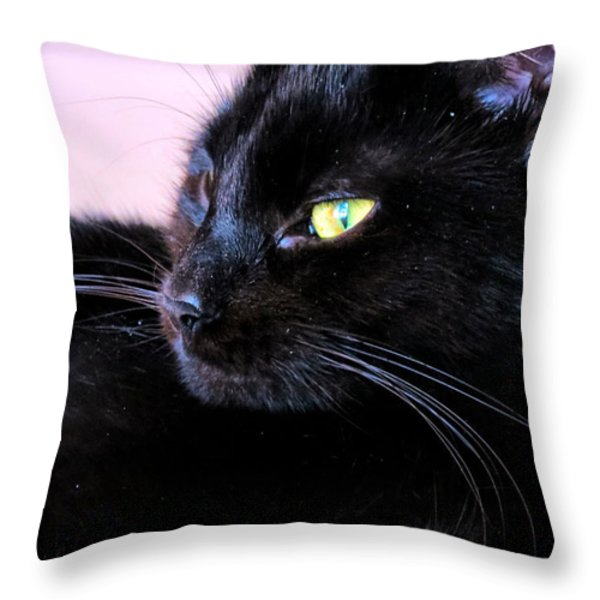 Green Eyes Throw Pillow by Michelle Milano