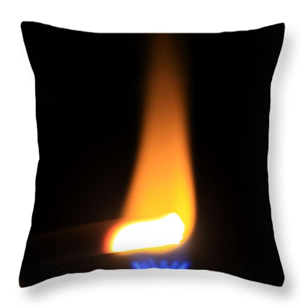 Heating Lime Limelight Throw Pillow by Ted Kinsman