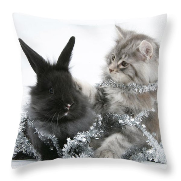 Kitten And Rabbit Getting Into Tinsel Throw Pillow by Mark Taylor