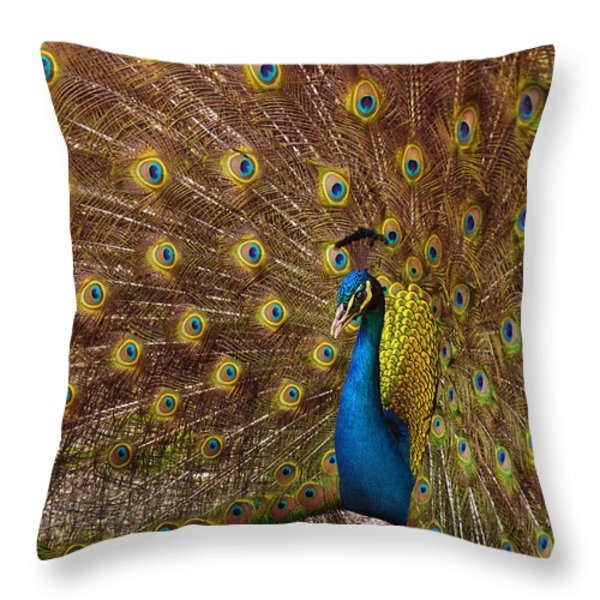 Peacock Throw Pillow by Carlos Caetano