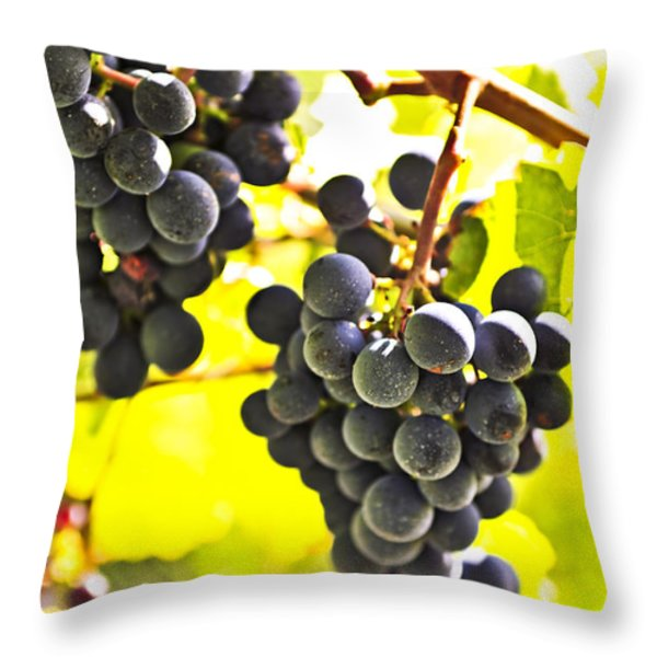 Red Grapes Throw Pillow by Elena Elisseeva