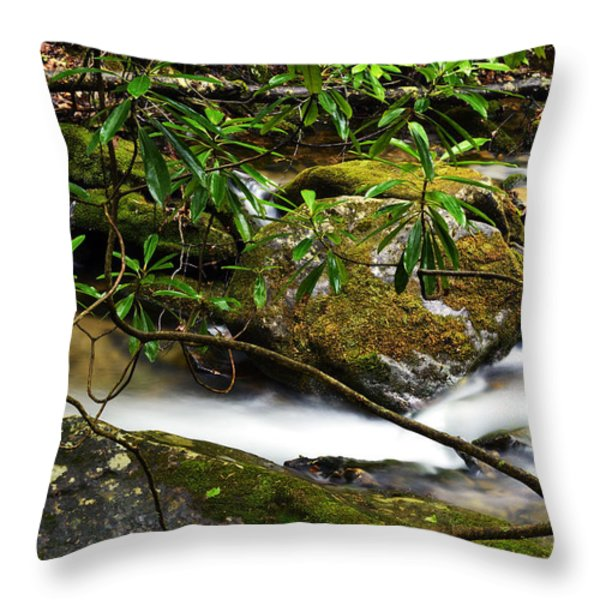 Rhododendron and Waterfall Throw Pillow by Thomas R Fletcher