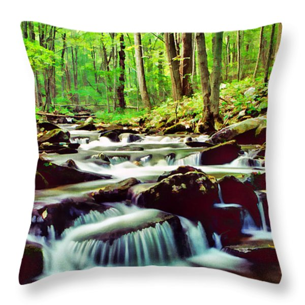 Solitude Throw Pillow by Darren Fisher