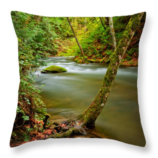 Whatcom Creek Throw Pillow by Idaho Scenic Images Linda Lantzy