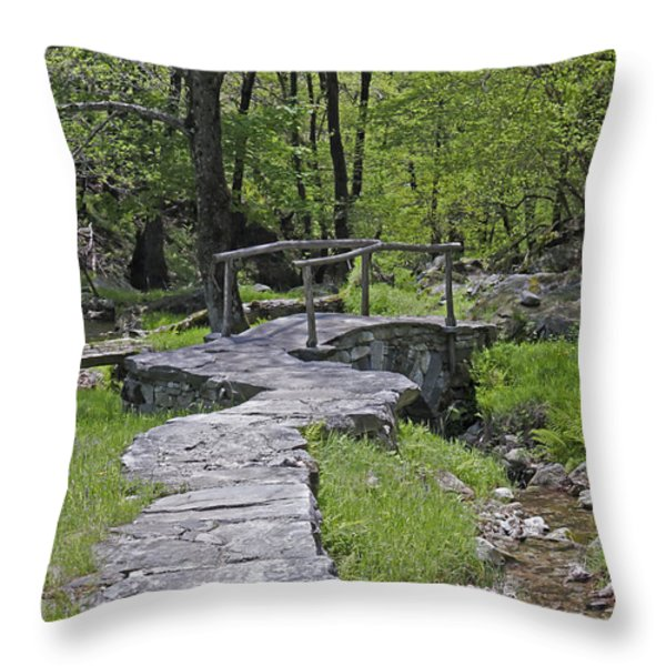 Wooden Bridge Throw Pillow by Joana Kruse