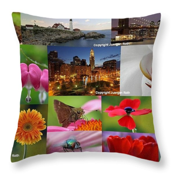 2012 Photography Artwork Highlights Throw Pillow by Juergen Roth