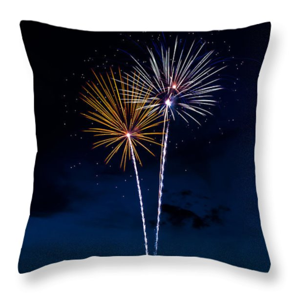 20120706-dsc06442 Throw Pillow by Christopher Holmes