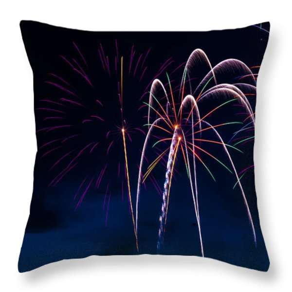 20120706-dsc06448 Throw Pillow by Christopher Holmes