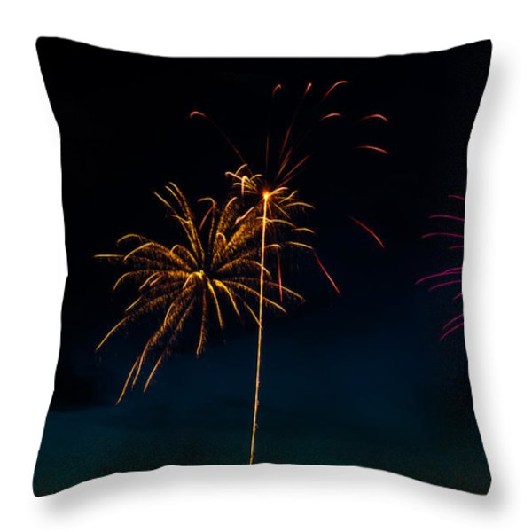 20120706-dsc06451 Throw Pillow by Christopher Holmes