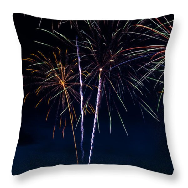 20120706-dsc06452 Throw Pillow by Christopher Holmes
