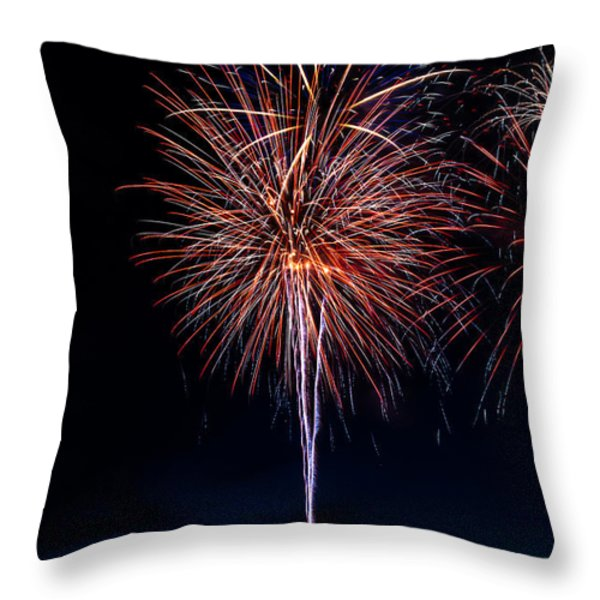 20120706-dsc06458 Throw Pillow by Christopher Holmes