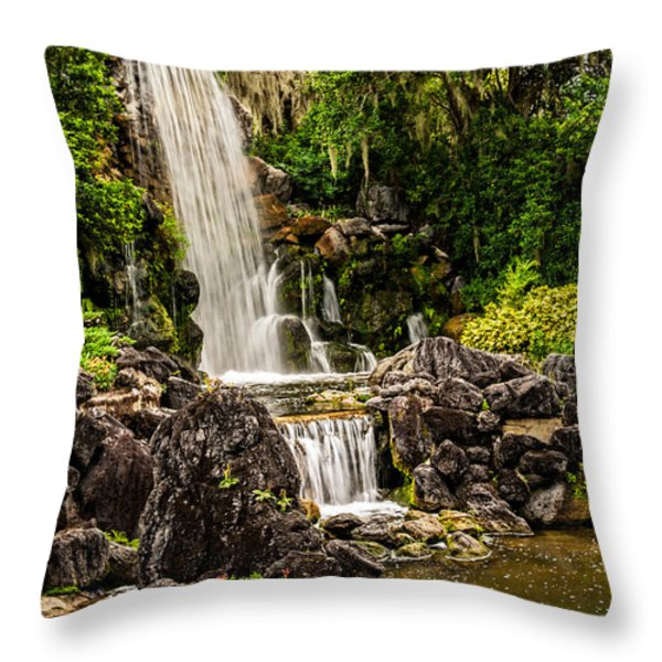 20120915-DSC09800 Throw Pillow by Christopher Holmes