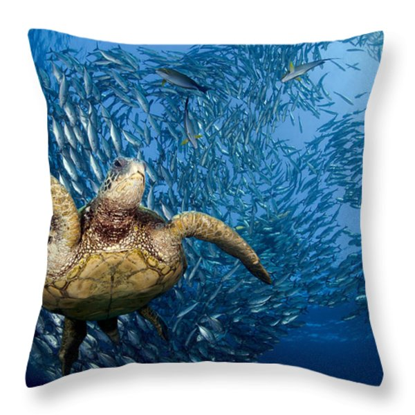 Green Sea Turtle Throw Pillow by Dave Fleetham