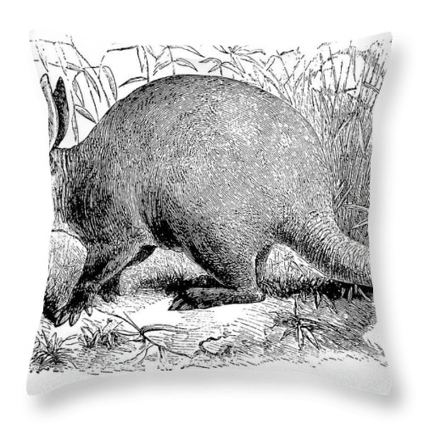 Aardvark Throw Pillow by Granger