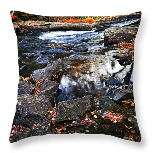 Fall Forest And River Landscape Throw Pillow by Elena Elisseeva