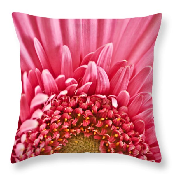 Gerbera Flower Throw Pillow by Elena Elisseeva