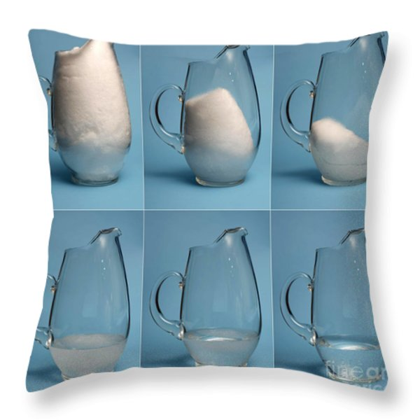 Snow Melting Throw Pillow by Ted Kinsman