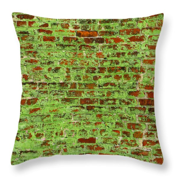 30 Throw Pillow by Skip Hunt