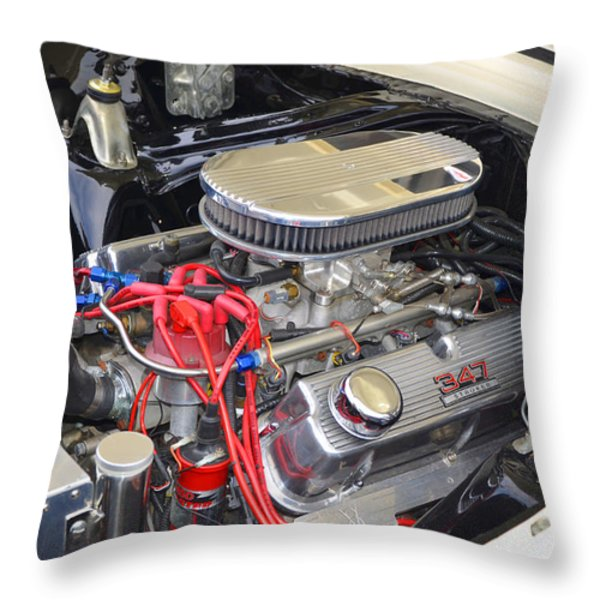 347 Stroker Throw Pillow by Paul Mashburn