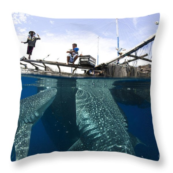 Whale Shark Feeding Under Fishing Throw Pillow by Steve Jones