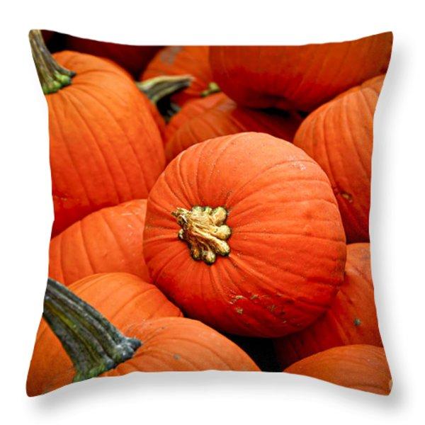 Pumpkins Throw Pillow by Elena Elisseeva