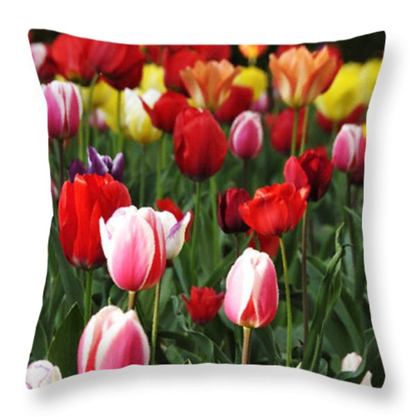 Tulip Garden University Of Pittsburgh Throw Pillow by Thomas R Fletcher