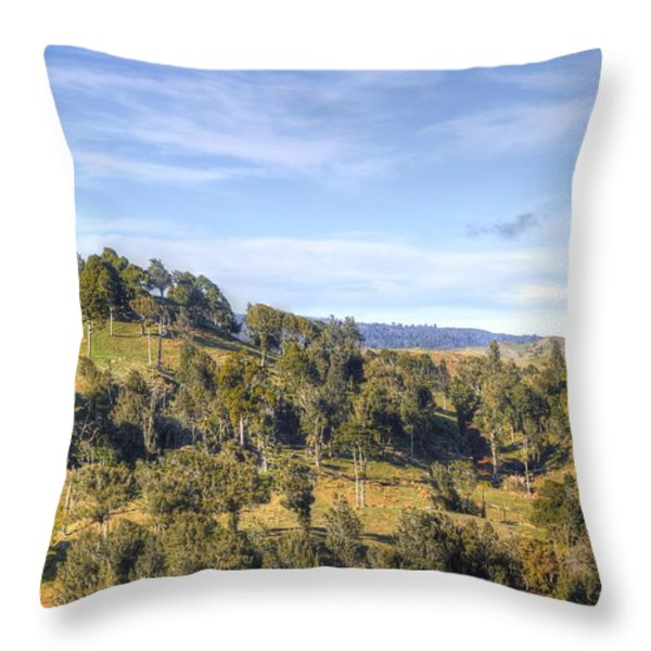 Landscape Throw Pillow by Les Cunliffe