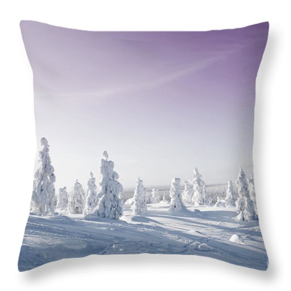 Winter Throw Pillow by Kati Molin