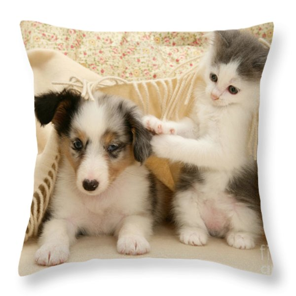 Kitten And Pup Throw Pillow by Jane Burton