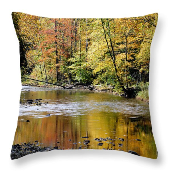 Williams River Autumn Throw Pillow by Thomas R Fletcher