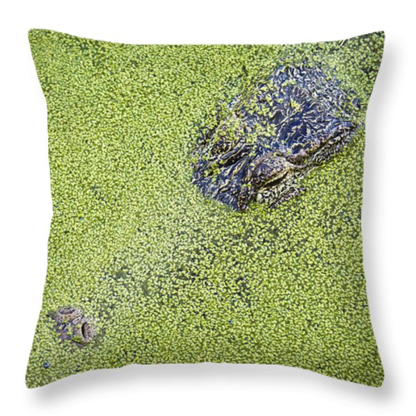 Alligator Untitled Throw Pillow by Patrick M Lynch
