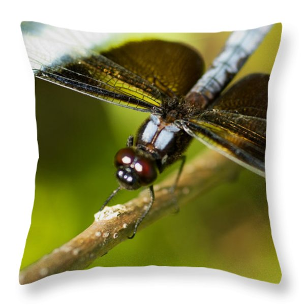 macro Throw Pillow by Jack Zulli