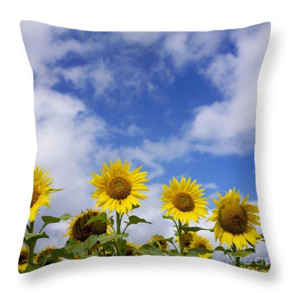 Field of sunflowers Throw Pillow by BERNARD JAUBERT