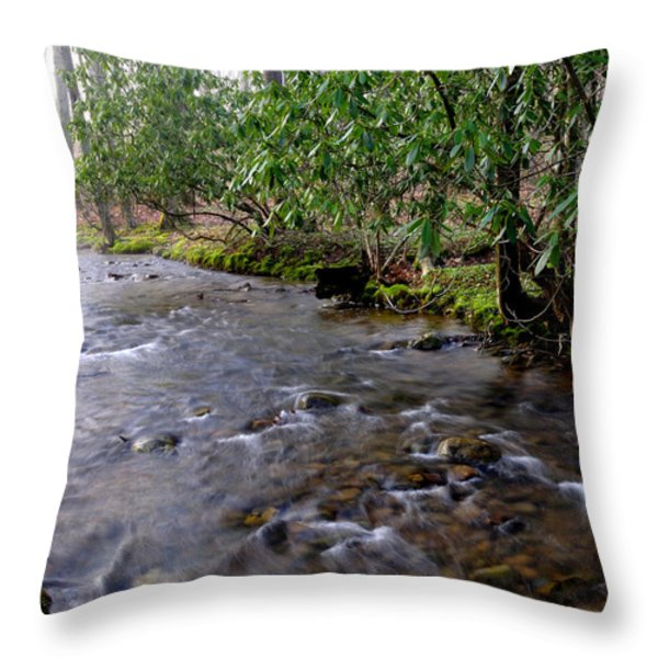 Middle Fork of Williams River Throw Pillow by Thomas R Fletcher