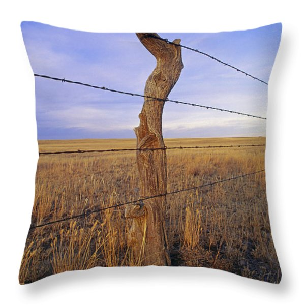 A Barbed Wire Fence Stretches Throw Pillow by Gordon Wiltsie