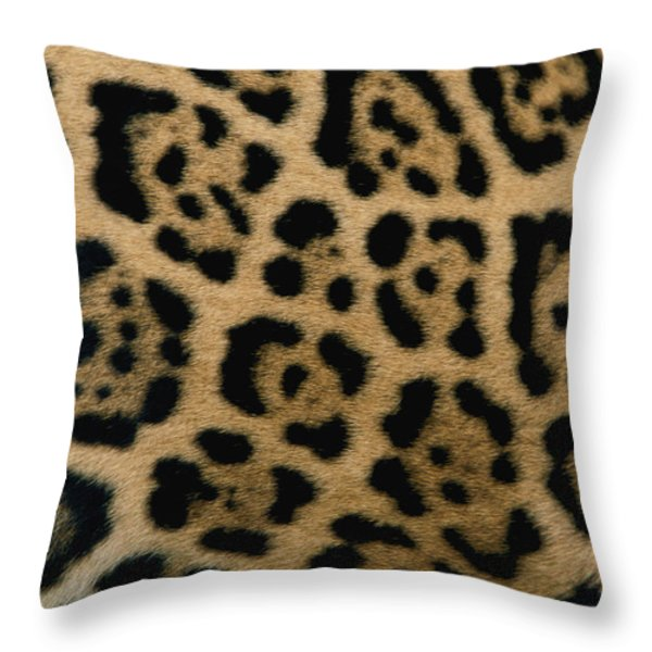 A Close View Of The Markings Throw Pillow by Steve Winter