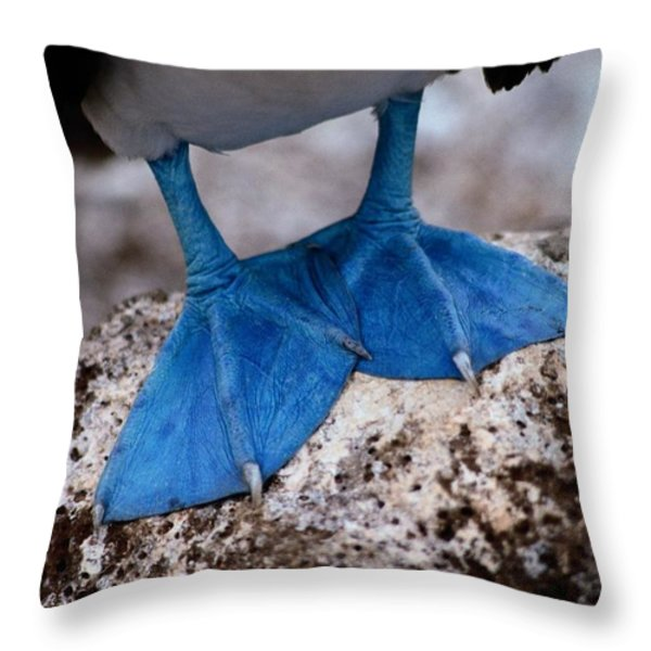 A Close View Of The Webbed Feet Throw Pillow by Tim Laman